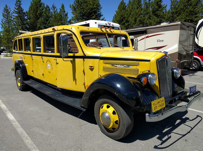 Yellowstone National Park's classic big yellow buses
