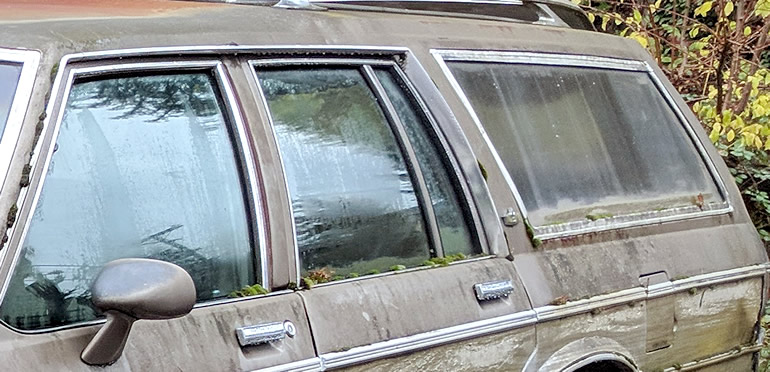 Moss is growing on the sills and trim of this 1977 Chevrolet Caprice wagon in the northern California forests