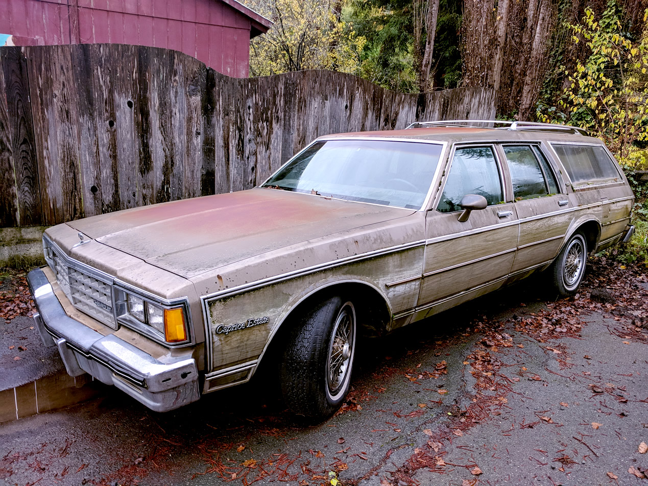 1977 Chevrolet Caprice Estate with woodside option parked near a barn among the redwoods in northern California