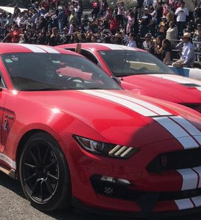 The largest gathering of Mustangs in a single event was on Sunday, December 3, 2017